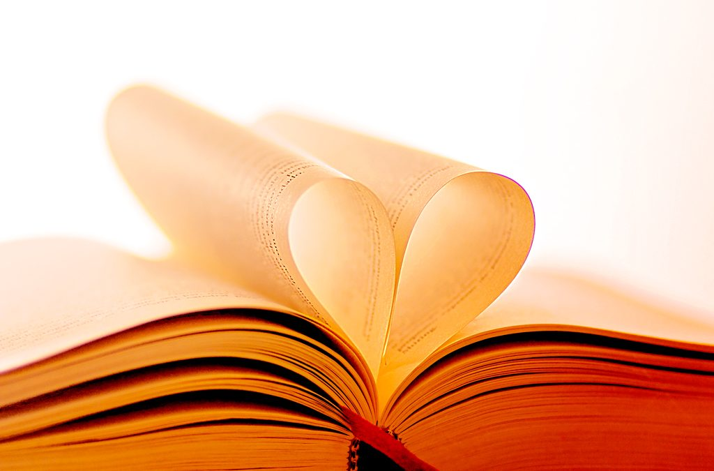 O livro publicado: E agora? Conheça as soluções em comunicação para o mercado editorial